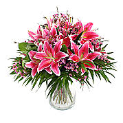 pink lilies pink lilies pink bouquets serenata flowers