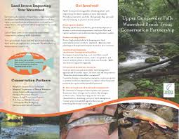 chesapeake bay native plants upper gunpowder falls brook trout conservation partnership