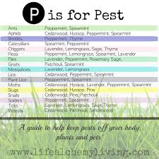 using young living oils for natural bug and tick repellent u2014 the