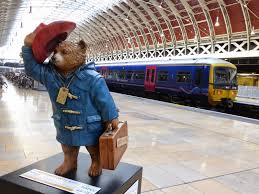 paddington bear trail glass