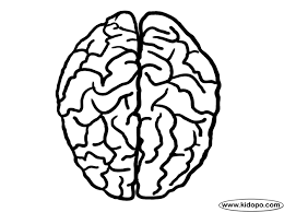 Brain Top View Coloring Page Brain Coloring Page
