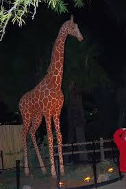 Phoenix Zoo Lights by Zoo Turns Into A Musical Light Extravaganza Arizona Destinations