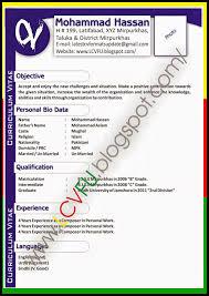 Best It Resume Format Sample Software Testing Resume Format Free Simple Resume Download
