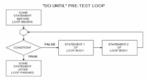 visual basic for loop the repetition control structure