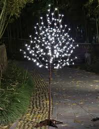 lightshare december 2014