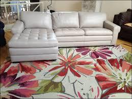 Ashley Sleeper Sofa Reviews Furniture Wonderful Havertys Leather Sofa Review Narrow Sleeper
