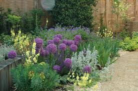 Planting Ideas For Small Gardens Gravel Garden Design Garden Design Sles Ideas