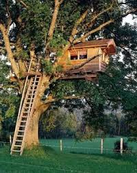 Tree House Home 15 Diy Ideas To Refresh Your Living Room 1 Treehouse Tree