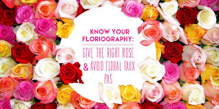 Meaning Of Pink Roses Flowers - know your rose meanings give the right rose fresh by ftd