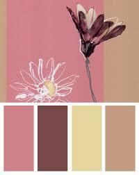 Pink Color Scheme 79 Best Pink Palette Images On Pinterest Colors Design Seeds