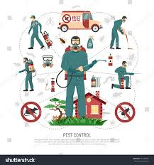 professional pest control services experts handling stock vector