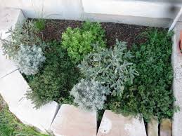 herb gardener pictures posters news and videos on your pursuit