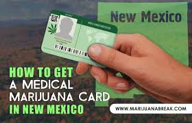 New Mexico Travel Document Holder images How to get a medical marijuana card in new mexico jpg