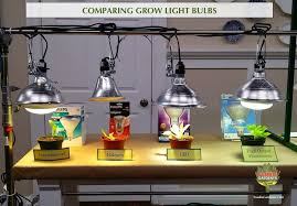 Halogen Shop Light Grow Lights For Beginners Start Plants Indoors The Foodie Gardener