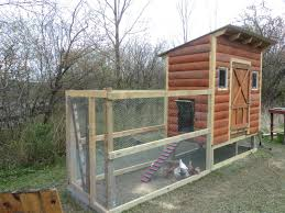Building A Small House How Much Did It Cost For You To Build Your Own Coop Backyard