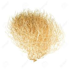 tumbleweed isolated on white stock photo picture and royalty