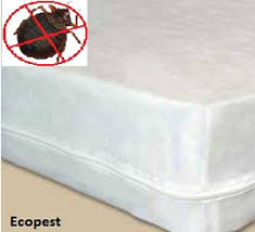 bed bug mattress and box spring encasements bed bug mattress cover edmonton box spring covers encasements