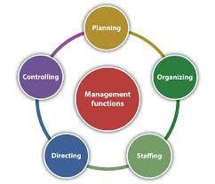 journal of management style guide principles of management and organization