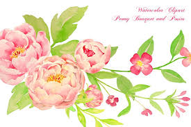 peony bouquet watercolor peony bouquet posy illustrations creative market