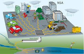 nsa commitment to the environment nsa gov
