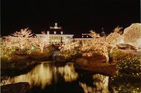 outdoor christmas lights for bushes christmas lights delightful outdoor christmas lights bushes