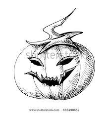 sketch pumpkin on halloween stock vector 688490659 shutterstock