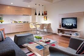 separation en verre cuisine salon studio à aire ouverte cuisine en bois clair canapé gris foncé