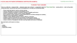 it data analyst work experience certificate