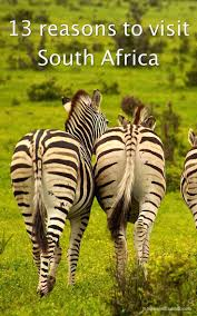 best 25 visit south africa ideas on pinterest south africa
