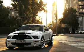 Black Mustang Wallpaper Bendaggers Com Feeding Your Dirty Doubting Minds Drool Over
