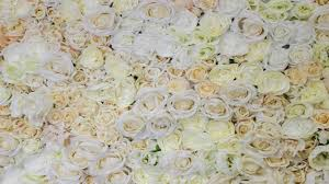 wedding backdrop flowers flower wall wedding backdrop gotcha covered