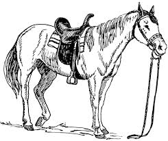 medium size coloring pages animals funny horse coloring