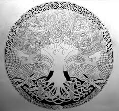 celtic tree of circle photo 3 photo pictures and