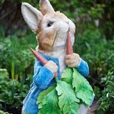 peter rabbit peterrabbitnews twitter