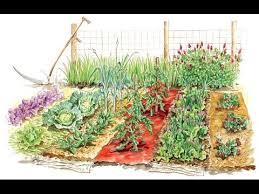 home design ideas 5 easy gardening tips tricks for beginners