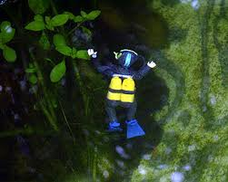 putting polymer clay scuba diver in the fish pond