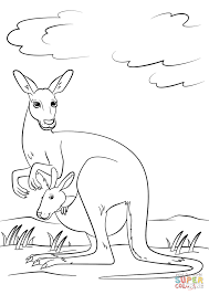cute kangaroo with baby in pouch coloring page free printable