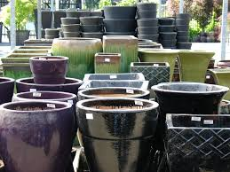 glazed ceramic pots containers and pots plant world