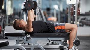 Starting Weight Bench Press Starting Weight For Bench Press Home Design Inspirations