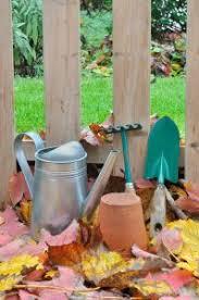 Zone Gardening - survival gardening how to boost your disaster preparedness