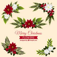 pretty flower ornaments vector free