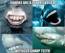 Sharknado Meme - shark week 2017 best funny memes heavy com