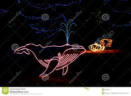 Zoo Lights Prices by Denver Zoo Lights Whale Editorial Stock Image Image 6835074
