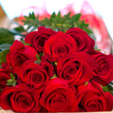 red flowers order stunning red roses and flowers online flower