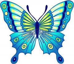 butterflies cartoon butterfly clipart 4 clipartix