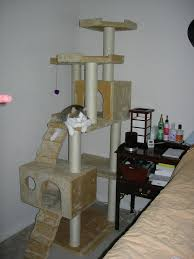 Free Diy Cat Furniture Plans by Best 25 Kitty Condo Ideas On Pinterest Cat Condo Condo