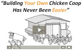Checklist For Building A House How To Build A Chicken Coop In 2017 A Step By Step Checklist