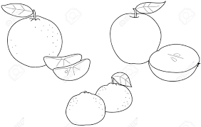 apples oranges and tangerines coloring illustration of winter