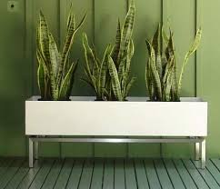 indoor windowsill planter planters extraordinary planter box indoor planter box indoor