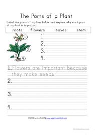 37 free esl plant worksheets